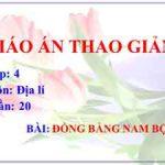 Giáo án Địa Lí lớp 4 tuần 20: Đồng bằng Nam Bộ