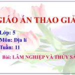 Giáo án Địa Lí lớp 5 tuần 11: Lâm nghiệp và Thủy sản