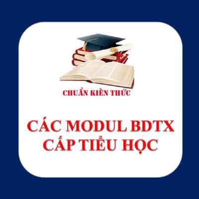 Cac Modul BDTX tieu hoc
