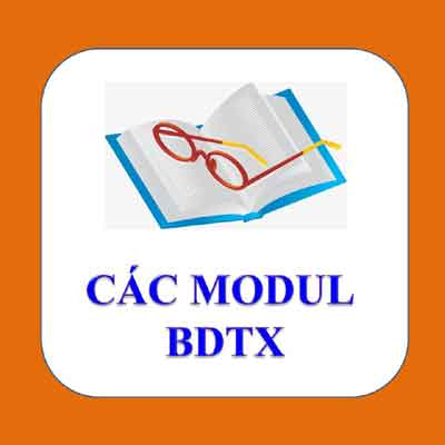 Các Modul BDTX mầm non