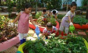 Một số biện pháp giáo dục trẻ bảo vệ môi trường trong trường mầm non