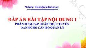 Dap An Bai 1