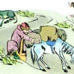 Tập đọc lớp 3 tuần 7, bài 20: Lừa và ngựa