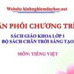 Phân phối chương trình môn Tiếng Việt lớp 1. Bộ sách Chân trời sáng tạo